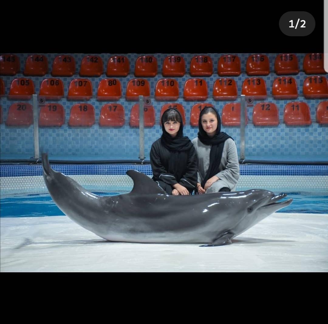 سارا و نیکا در استخر دلفین
