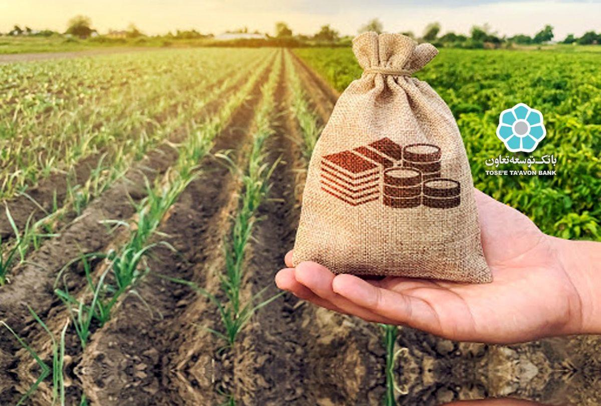 بانک توسعه تعاون 24500 هزار میلیارد ریال تسهیلات اشتغال پایدار روستایی پرداخت کرد